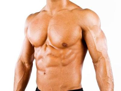 anatomia dos músculos peitorais