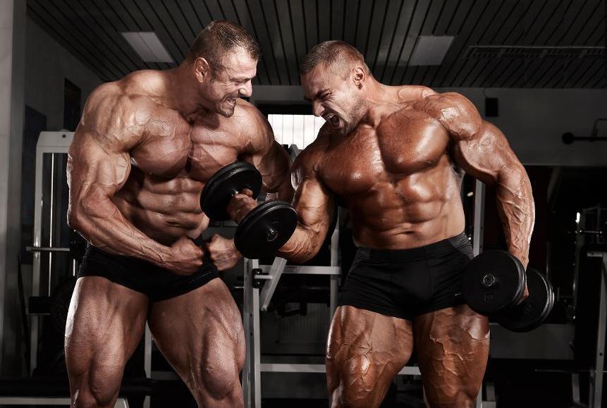 efeitos dos esteróides nos músculos