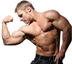 efeitos dos esteróides